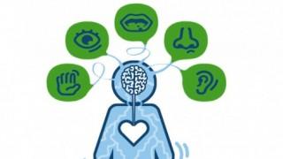 Training Prikkelverwerking Ontdek Autisme